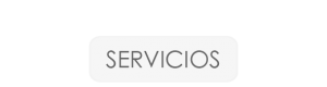 B-SERVICIOS